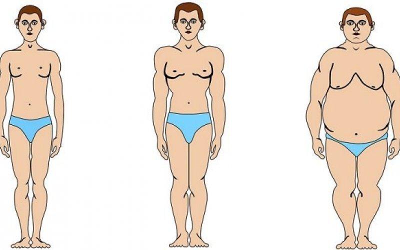 Диета според типа тяло