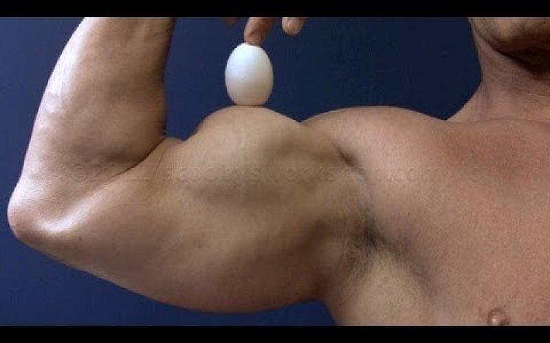 Защо яйцата са перфектният протеин за един бодибилдър?