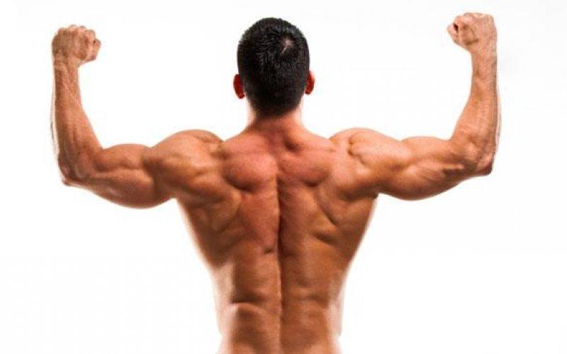 Топ упражнения за долната част на гърба