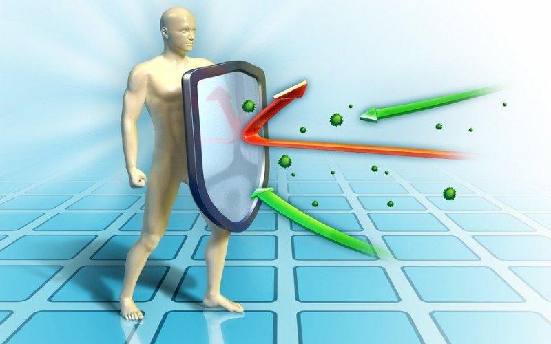 Подкрепа за имунната система за по-добри резултати