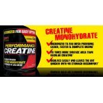 SAN Performance Creatine 1200 грSAN Performance Creatine 1200 гр2