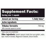 AMIX TribuLyn ™ Max 90% / 750 мг / 90 капсулиAM2932