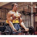 Бицепс изолатор Arm Blaster + БОНУС Тренировъчни фитили Аrmаgеddоn SроrtsARM04212