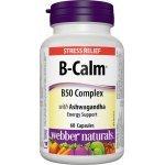 Webber Naturals B-CALM B50 Complex with Ashwagandha 60 капсули31611