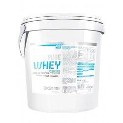 BIOTECH USA 100% Pure Whey 4000 гр