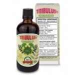 CVETITA Tribulus + Ginkgo 100 млCVE253
