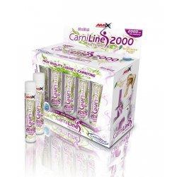 AMIX CarniLine ® Pro Fitness 2000 10 x 25 мл