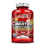 AMIX Creatine Monohydrate 800 мг 500 капсули  AM1741