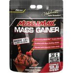 AllMax Muscle Maxx Gainer 5344 грAllMax Muscle Maxx Gainer 5344 гр1