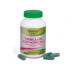 VemoHerb Tribulus Cichorium 60 капсули