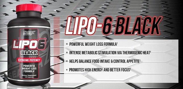 lipo 6 nutrex black